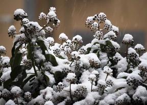 Protección Civil pide extremar las precauciones por nevadas en la sierra