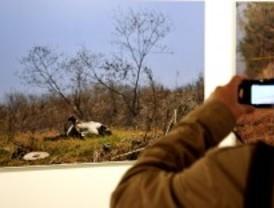 La violencia en México llega a PhotoEspaña