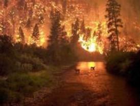 Encierro de los trabajadores contratados de incendios forestales en Villalba