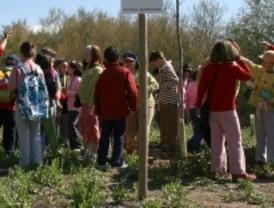 Talleres medioambientales para escolares en Ciudad Lineal