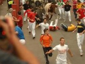 Autorizados más de 400 festejos taurinos en el primer semestre de 2008