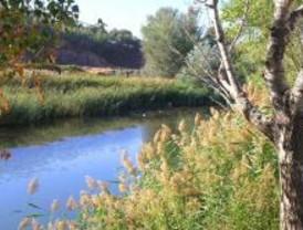 Adena convoca un 'chapuzón' en el río Henares para exigir que se cumpla la directiva del agua
