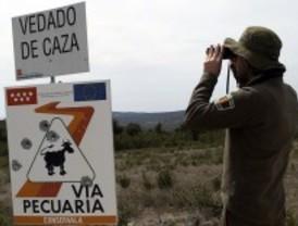 Se abre la media veda para los cazadores madrileños