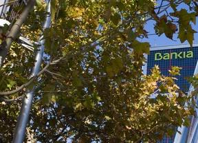 Bankia dona 25.000 euros a la fundación 'Make a Wish'