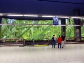 La ruta del museo subterráneo