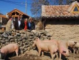 La Comunidad reforma una casa rural en La Serna del Monte