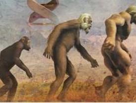 Una imagen amplia del ser humano