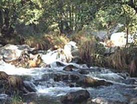 La Comunidad protege los ríos Alberche y Cofío declarándolos Zona Especial de Conservación