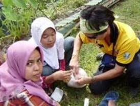 La Comunidad de Madrid y ONG envían ayuda para los afectados en Indonesia