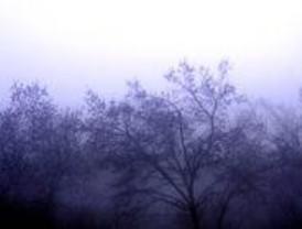 La niebla en Barajas provocó retrasos y el desvío de dos vuelos a Valencia