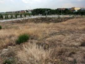 Arden 10 hectáreas de pastos en Valdebebas