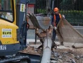 Talas en Serrano: la Comunidad amenaza con sanciones al Ayuntamiento