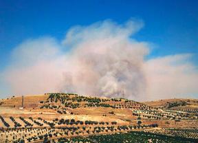 Controlado el incendio de una zona agrícola de Campo Real