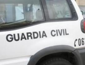 Detenidos once ladrones de chalés en Villaviciosa