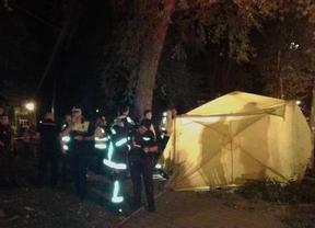 Muere un hombre al caerle encima la rama de un árbol en Santa Eugenia