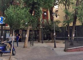 La polémica por los árboles de la calle de San Gregorio amaina