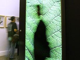 'Botánica. After Humboldt', universo natural