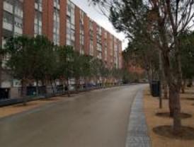 Madrid Río verá en 2009 crecer el Salón de Pinos