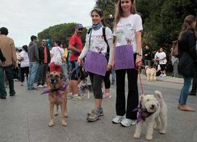 Perroton 2014, dos corredoras con sus perros muestran su apoyo a Excalibur