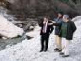 Unos 1.000 árboles y arbustos repoblarán la Cuenca Alta del Manzanares