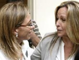 Defensa asegura que la gripe de Hoyo está en