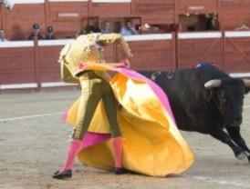 Collado Mediano cierra los carteles de su Feria de Novilladas 2010 con recortes de gastos