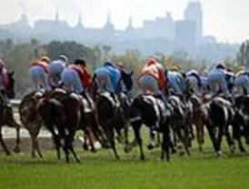 El  domingo tendrá lugar la clausura de carreras de caballos de la Temporada de Otoño