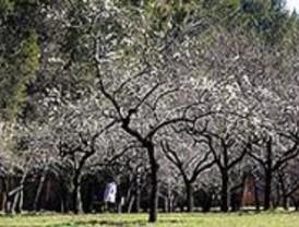 IU denuncia el deterioro del parque de la Quinta de los Molinos