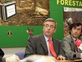 La Comunidad esclarece los 222 incendios forestales ocurridos este año