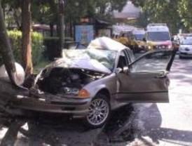 Muere tras empotrar su coche contra un árbol