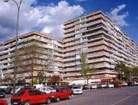 Miss y mister Madrid 2008 serán elegidos en Torrejón este viernes