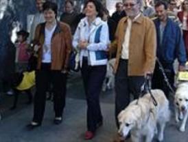 Marcha por el centro para reivindicar la labor de los perros-guía