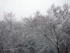 Activada la alerta amarilla por nieve en la Sierra
