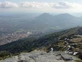 Denuncian destrozos en los árboles del monte Abantos en San Lorenzo del Escorial