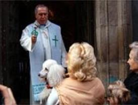'Que el Señor bendiga este animal y San Antón lo proteja de todos los males'