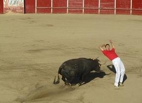 Fiestas de Soto del Real 2013