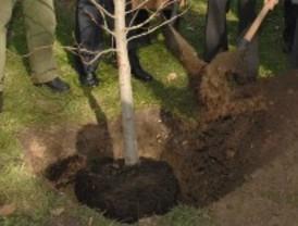 Getafe tendrá 1.000 nuevos árboles