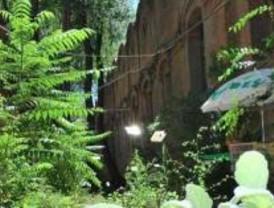 Matadero reune a las semillas de la ecología