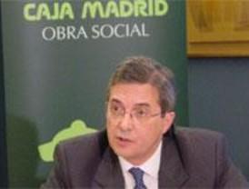 Caja Madrid nombra a Carlos Martínez consejero delegado del holding 'Cibeles'