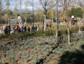 Tres Cantos recupera el parque Soto de Viñuelas, un nuevo espacio de ocio y deporte