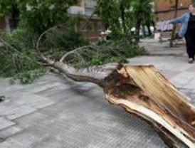 Casi 2.000 avisos al 112 por las fuertes lluvias