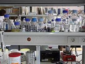 ¿Cómo es el día a día de un microbiólogo?