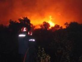Controlado un incendio originado en un amontonamiento de poda en San Fernando