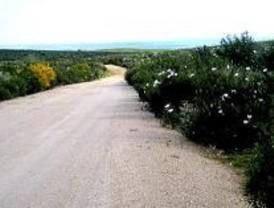 Ecologistas pide incluir las vías pecuarias en Madrid 2016