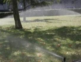 El robo de contadores de agua amenaza el riego de los jardines municipales