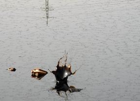 Madrid comenzará la restauración de la Laguna del Aceite en 2014