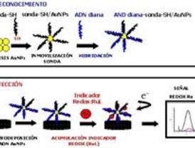 El oro y el rutenio pueden ayudar a detectar secuencias largas de ADN