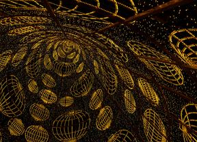 Vista del árbol de la Puerta del Sol desde su interior