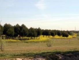 La Comunidad programa actividades para conocer los espacios naturales de la región
