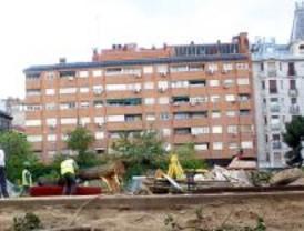 El Ayuntamiento tala nueve árboles en Barceló